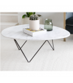 ORGANIC MARBLE COFFEE TABLE